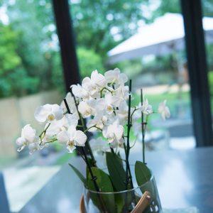 kitchen island, kitchen design, Nikkirees.com, interior design Wimbledon london interior designer, surrey Interiors